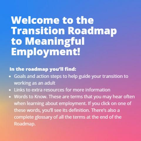 Transition Roadmap to Meaningful Employment