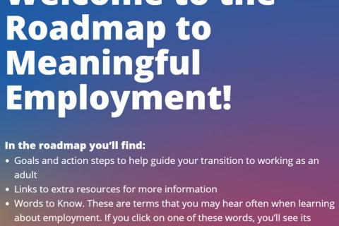 Roadmap to Meaningful Employment
